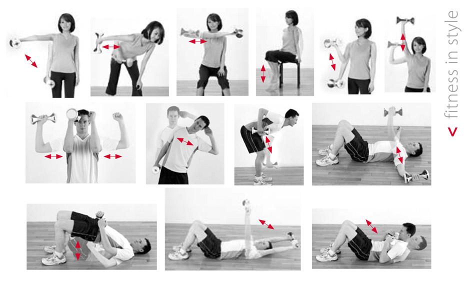 Адонис комплекс упражнений